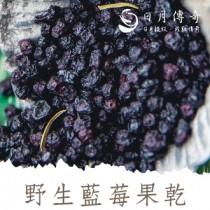 日月傳奇 野生藍莓果乾 170g 罐裝